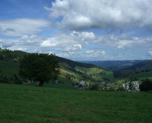 Hofsgrund Schauinsland by pixabay